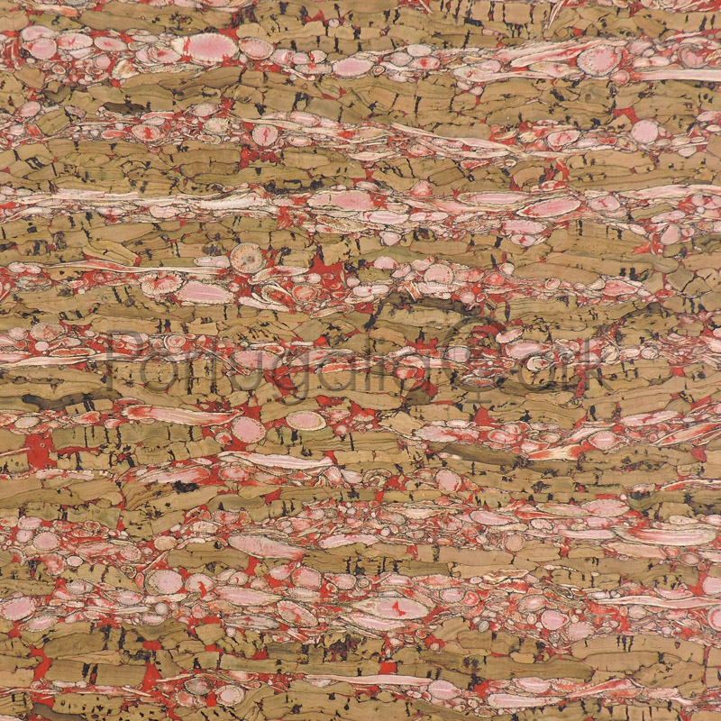 Cork and Fennel fabric Red